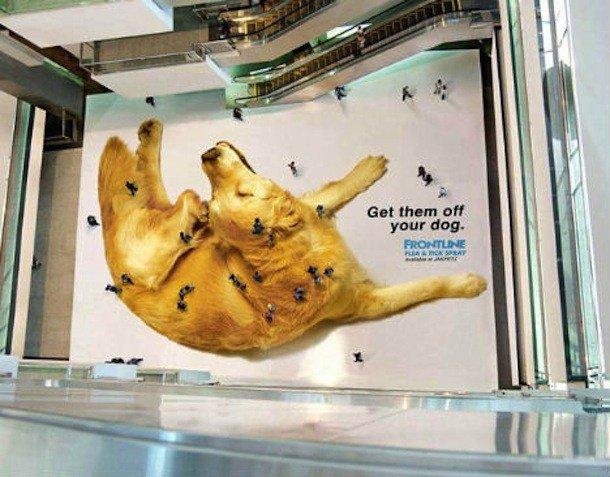 comunicação visual shopping