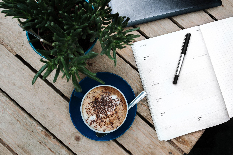Como usar diario criativo